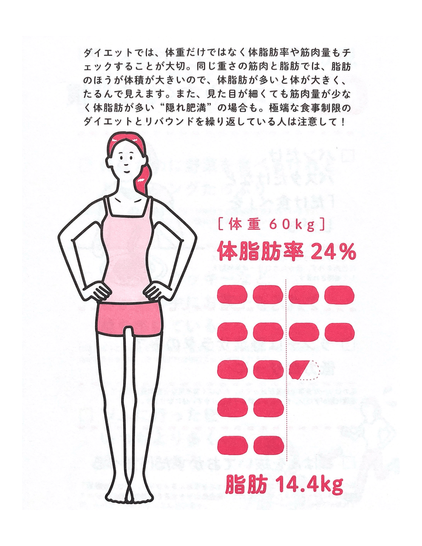 筋肉と体脂肪