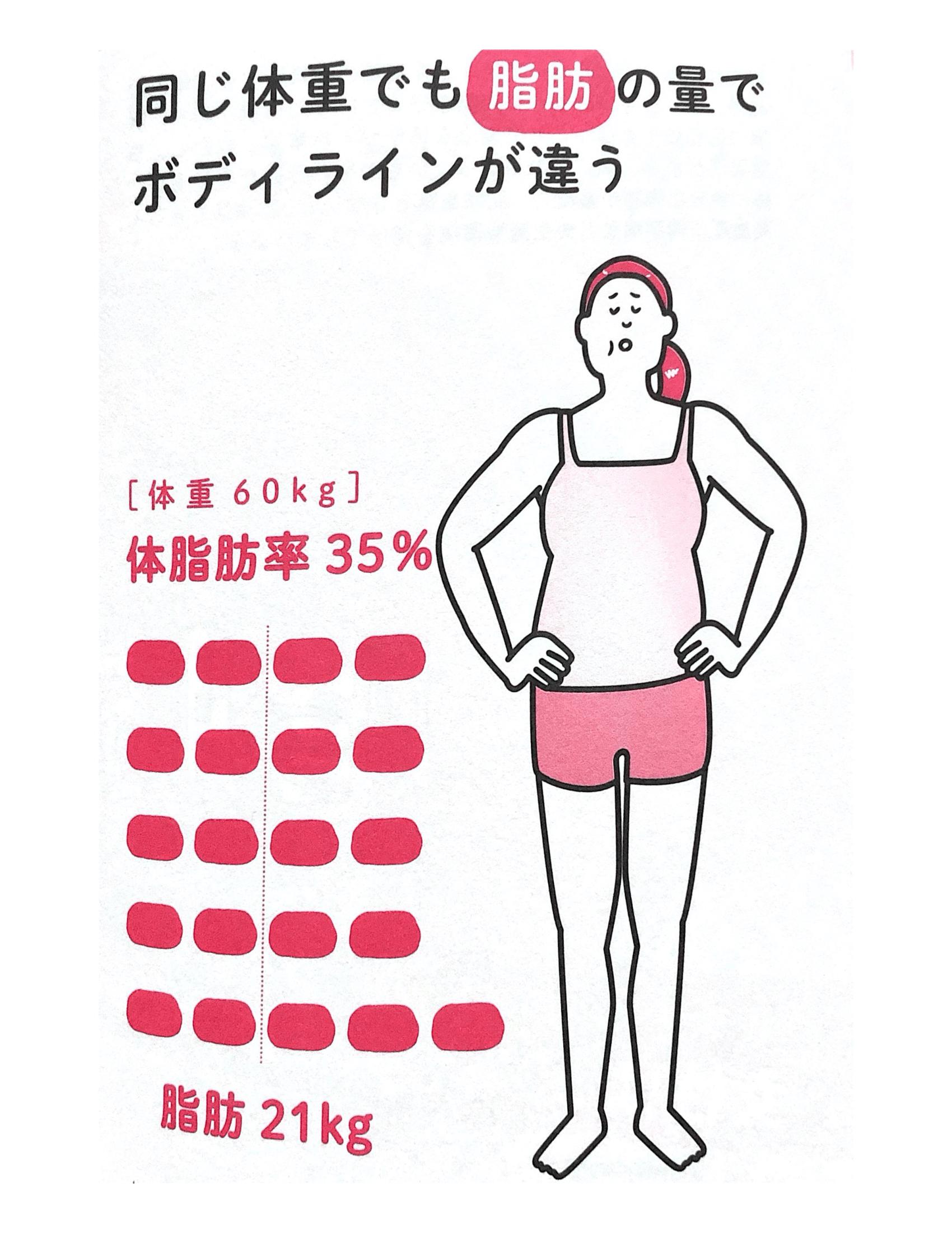 脂肪とボディライン